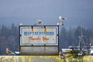 deep-bay-harbour